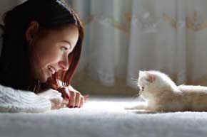Few more tips to remove pet odours from carpet