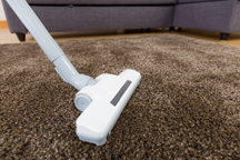 Regular Vacuuming is the best solution of all