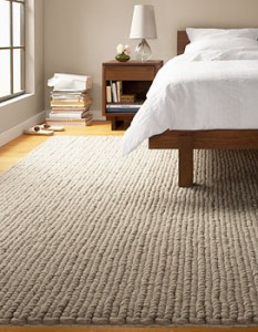 Ways to remove pet odours from carpet